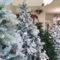 """PROMO """"Rottama il Tuo Albero di Natale"""""""